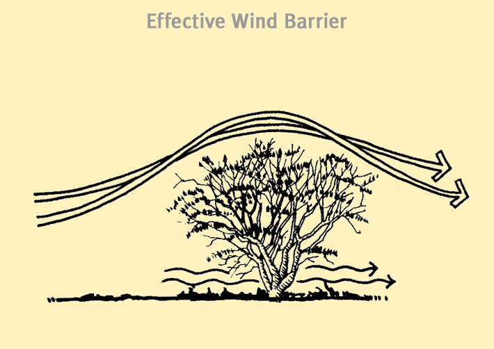 effectivebarrier