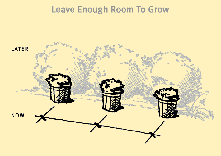 enoughroom