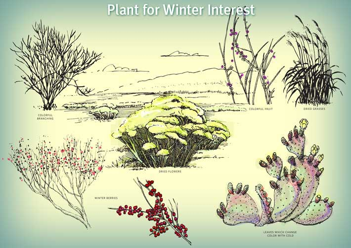 winter_collage